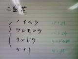 b0055385_19281121.jpg