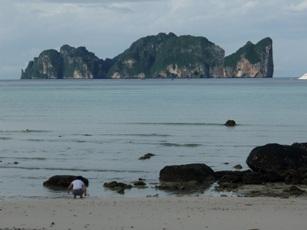 ピピ島オーバーナイトトリップ☆_f0144385_1451719.jpg