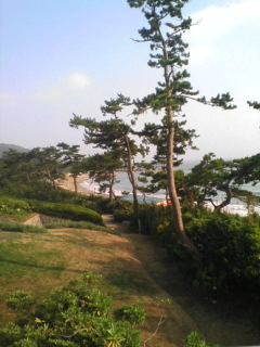 葉山_b0157416_2214841.jpg