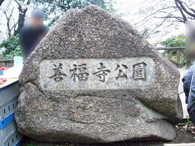 2008年 善福寺公園で花見_a0016730_4554250.jpg