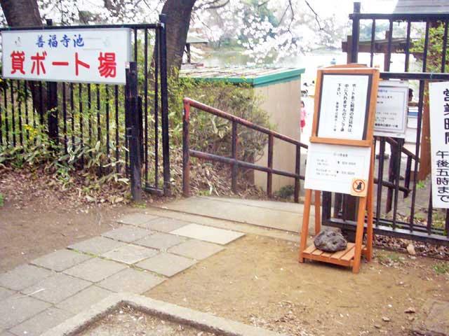 2008年 善福寺公園で花見_a0016730_4561021.jpg