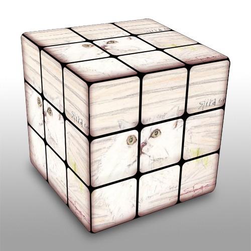 キューブで遊ぶ・・・。_e0054438_15272929.jpg