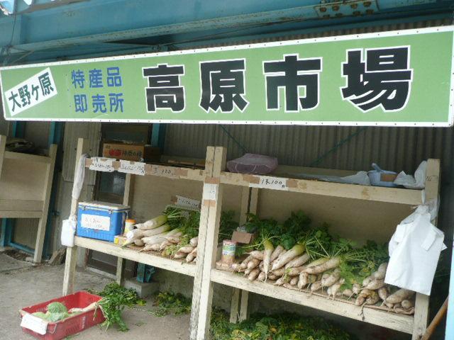 採れたての美味しい大根が100円です。_f0099147_22215076.jpg