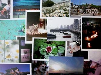 NORi写真展、大切なものを見つけに来てください。_a0017350_22534418.jpg