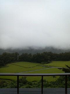雨だったので_d0152765_1545516.jpg