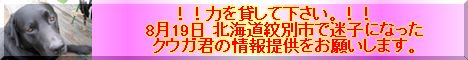 c0046979_16244797.jpg