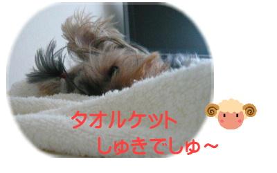 f0018384_14164566.jpg