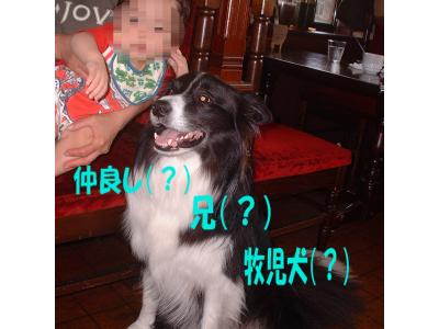 c0120585_1921358.jpg