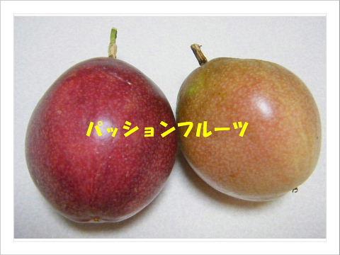 b0104592_16211815.jpg