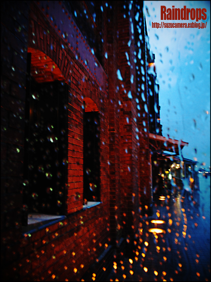 雨しずく_f0100215_2354434.jpg
