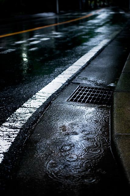 止まない雨は…_e0117517_042518.jpg