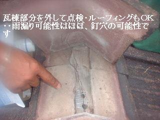 f0031037_17505772.jpg