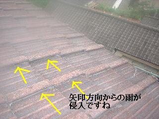 f0031037_1752217.jpg