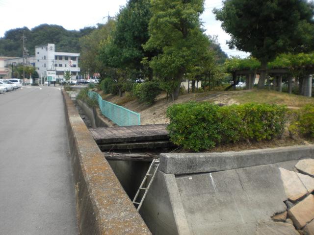 11番町緑道公園・・・・・_b0152548_17451813.jpg