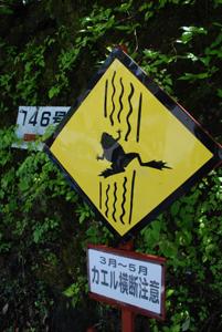 軽井沢はもう、秋_b0053082_0453569.jpg