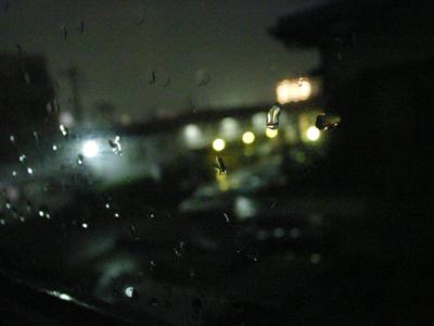 雨の一日_a0097735_15352.jpg