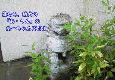 d0139352_08933.jpg