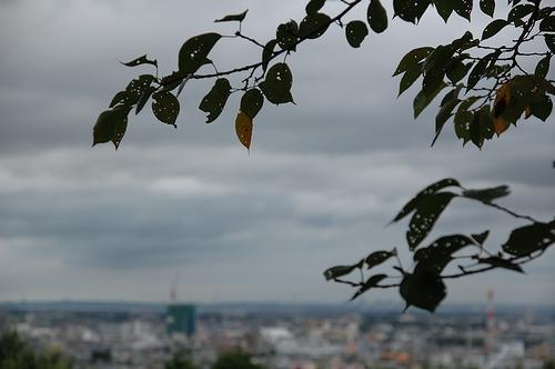 曇り空_c0126161_2124946.jpg