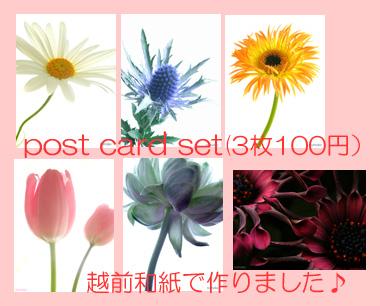 b0117362_0283579.jpg