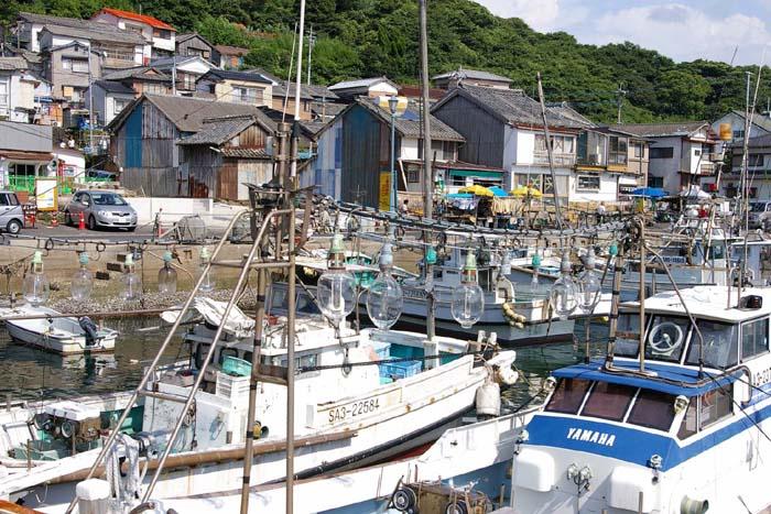 いか釣り船_f0130879_23175828.jpg