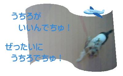 f0018384_10395866.jpg