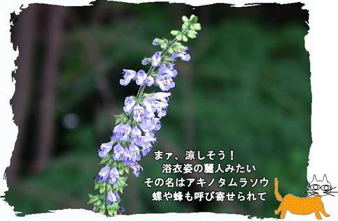 f0137096_2038882.jpg
