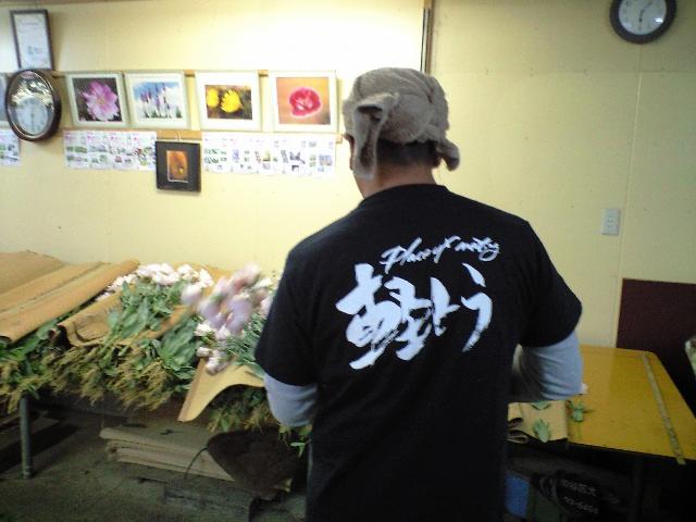 花の品質_d0099708_8223810.jpg