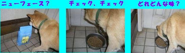 b0085815_10233260.jpg