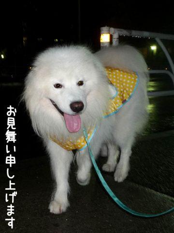カッパ走行_c0062832_18575852.jpg