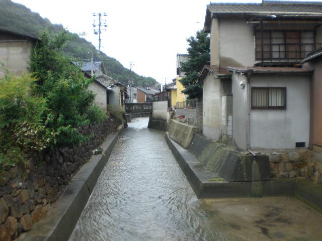集中豪雨・・・_b0152548_1725296.jpg