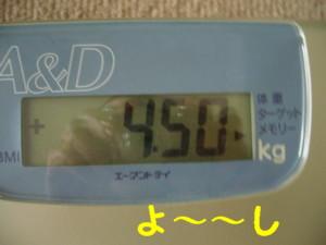 f0145192_1540290.jpg
