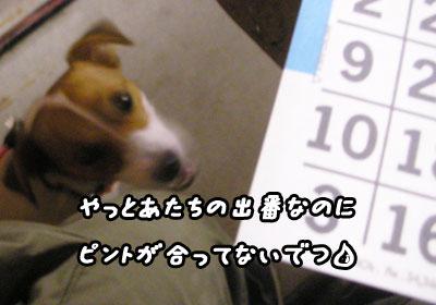 f0129214_1122337.jpg