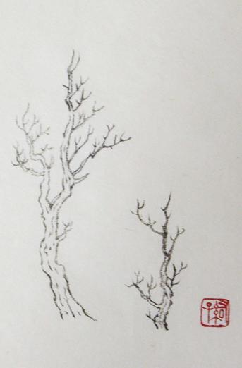 『芥子園画伝』 樹法④_c0160745_19432612.jpg