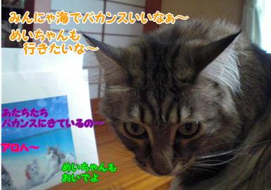 d0139352_101361.jpg