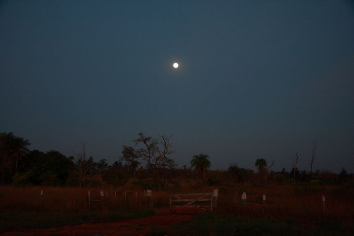 月夜を歩く_e0110461_10465019.jpg