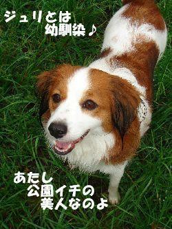 b0101991_2225921.jpg
