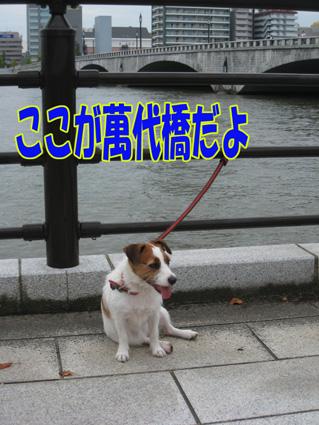 f0035044_17384022.jpg