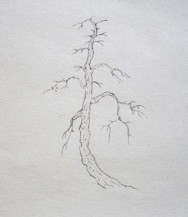 『芥子園画伝』 樹法⑤_c0160745_13293589.jpg