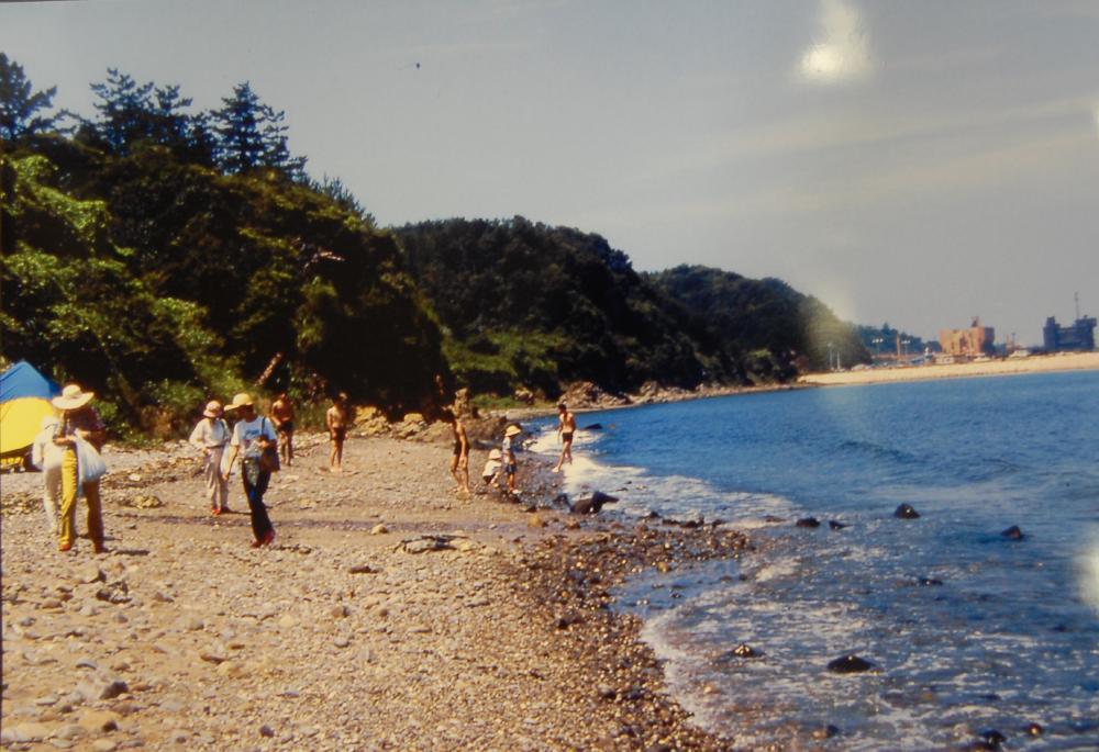 海辺の環境学習・エコツアー指導者育成講座サポート第2日_c0108460_23121647.jpg