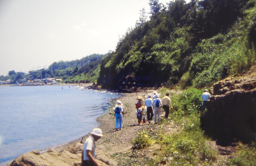 海辺の環境学習・エコツアー指導者育成講座サポート第2日_c0108460_23124288.jpg