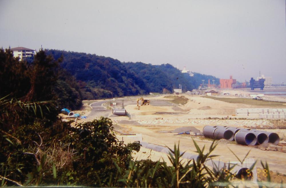 海辺の環境学習・エコツアー指導者育成講座サポート第2日_c0108460_2313866.jpg