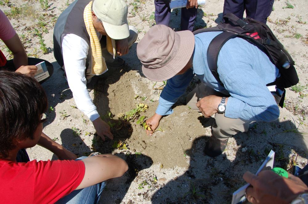 海辺の環境学習・エコツアー指導者育成講座サポート第2日_c0108460_23204957.jpg