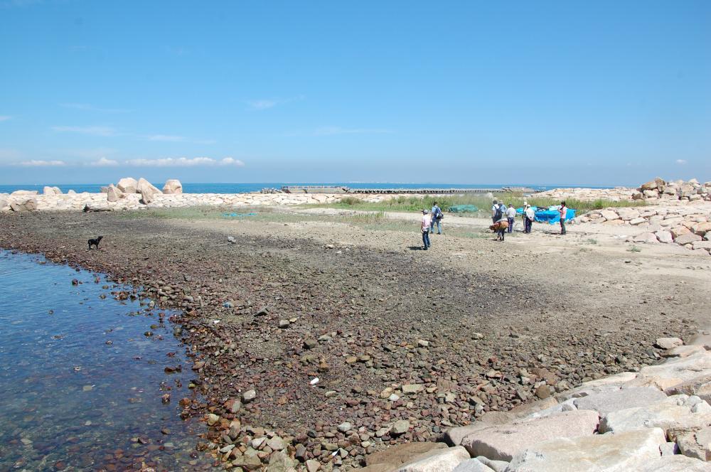 海辺の環境学習・エコツアー指導者育成講座サポート第2日_c0108460_23212286.jpg
