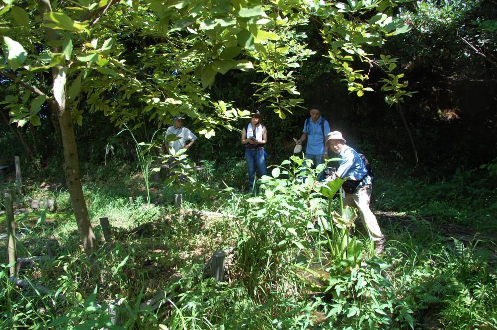 海辺の環境学習・エコツアー指導者育成講座サポート第2日_c0108460_23224362.jpg