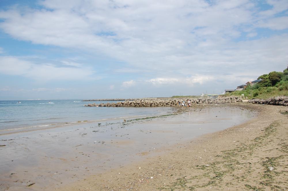 海辺の環境学習・エコツアー指導者育成講座サポート第2日_c0108460_23234913.jpg