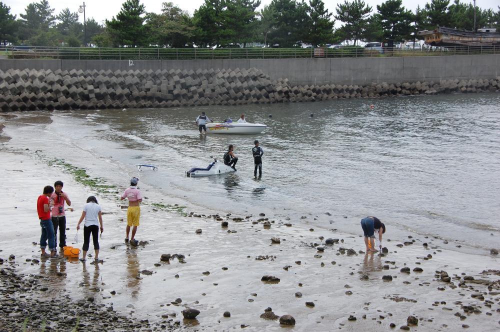 海辺の環境学習・エコツアー指導者育成講座サポート第2日_c0108460_23241239.jpg