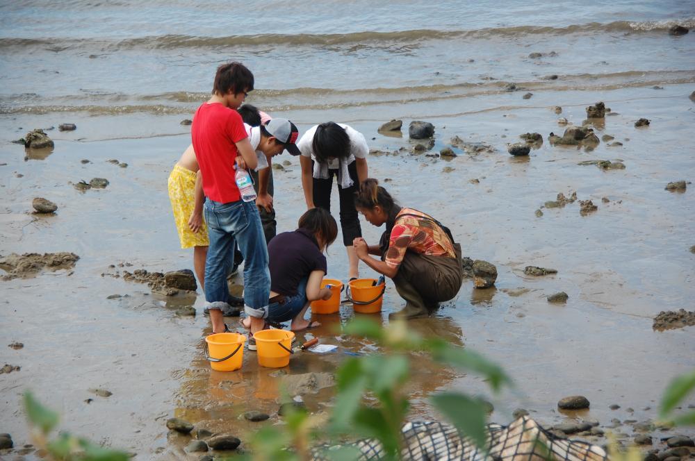海辺の環境学習・エコツアー指導者育成講座サポート第2日_c0108460_23242977.jpg