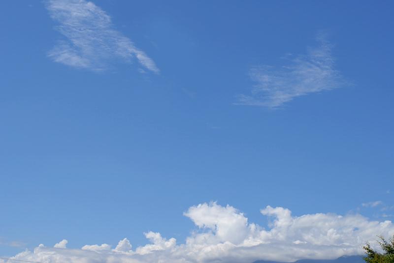 青空♪_f0053272_15102272.jpg