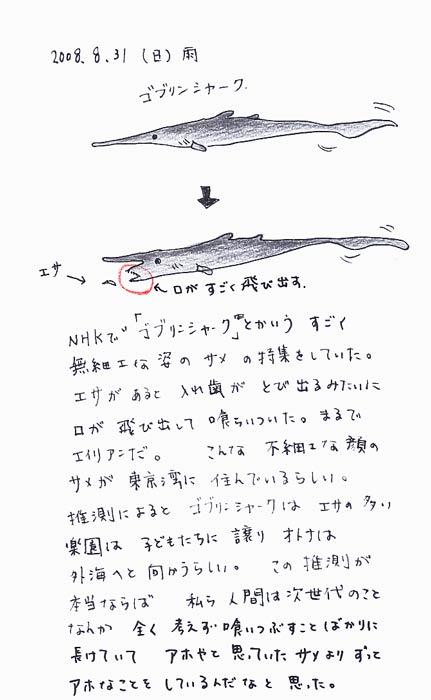 ゴブリンシャーク in 東京湾_f0072976_2210399.jpg