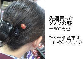 c0076385_1754046.jpg